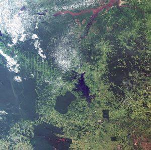 Ecometrica Brazil Amazon Basin